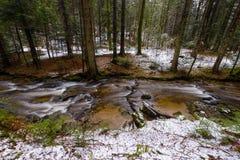 Río de la montaña, corriente, cala con los rápidos en el último otoño, invierno temprano con nieve, garganta vintgar, Eslovenia fotografía de archivo libre de regalías
