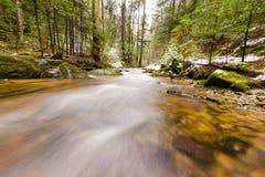 Río de la montaña, corriente, cala con los rápidos en el último otoño, invierno temprano con nieve, garganta vintgar, Eslovenia fotos de archivo