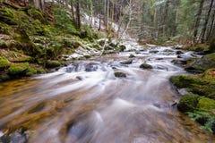 Río de la montaña, corriente, cala con los rápidos en el último otoño, invierno temprano con nieve, garganta vintgar, Eslovenia fotografía de archivo