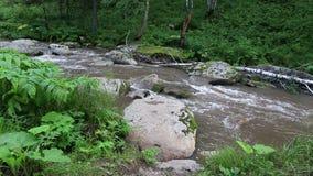 Río de la montaña de Belokurikha en Altai Krai Imagenes de archivo