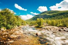 Río de la montaña de la agua fría de la naturaleza de Noruega Imagenes de archivo