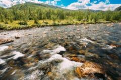 Río de la montaña de la agua fría de la naturaleza de Noruega Foto de archivo libre de regalías
