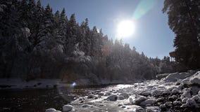 Río de la montaña del invierno rodeado por los árboles y los bancos de nevado almacen de metraje de vídeo