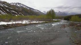 Río de la montaña del paisaje de la primavera, apenas árboles florecientes y nieve a lo largo de las orillas del río metrajes