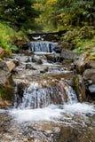 Río de la montaña en bosque oscuro denso Imagenes de archivo