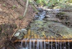 Río de la montaña en el bosque cárpato salvaje entre las colinas Fotos de archivo libres de regalías