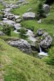 Río de la montaña en el bosque del verano Imagen de archivo libre de regalías