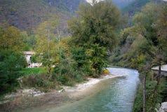 Río de la montaña en el medio del bosque verde en Italia fotografía de archivo libre de regalías