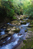 Río de la montaña en el medio del bosque verde, piedras cubiertas con el musgo Fotografía de archivo libre de regalías