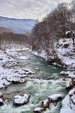 Río de la montaña en invierno fotos de archivo libres de regalías