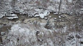 Río de la montaña en invierno nevoso Corriente helada de la montaña Altai, Rusia metrajes