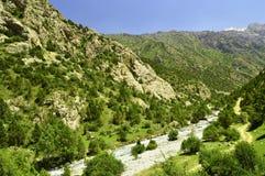 Río de la montaña en la garganta de Galuyan, Kirguistán Fotografía de archivo libre de regalías