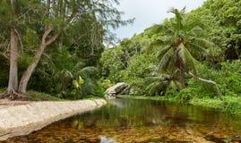 Río de la montaña en las zonas tropicales Imagenes de archivo