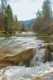 Río de la montaña en los Cárpatos Foto de archivo