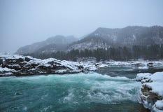 Río de la montaña en nieve del invierno imágenes de archivo libres de regalías