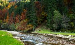 Río de la montaña en otoño foto de archivo