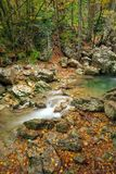 Río de la montaña en paisaje del otoño del bosque imagen de archivo