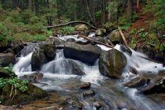 Río de la montaña en verano imagenes de archivo