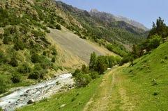 Río de la montaña, garganta de Galuyan, Kirguistán Fotografía de archivo libre de regalías