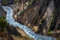 Río de la montaña Paisaje del río de la cascada de la montaña de Yellowstone, primer Imagenes de archivo