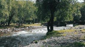 Río de la montaña que fluye debajo de un puente de madera escénico Un río con una parte inferior de piedra Curso rápido de un río almacen de metraje de vídeo