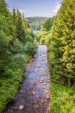 Río de la montaña que fluye en el lago Fotos de archivo