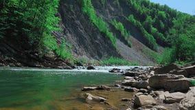 Río de la montaña que rabia Locura del agua limpia, clara en el río de la montaña Cámara lenta tiro lejano almacen de video