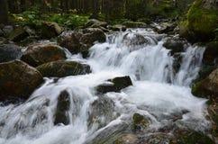Río de la montaña, Retezat, Cárpatos Rumania Imagen de archivo libre de regalías
