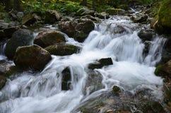Río de la montaña, Retezat, Cárpatos Rumania Fotos de archivo libres de regalías