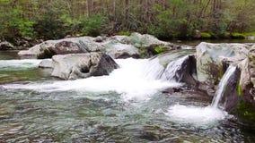 Río de la montaña Riegue las cascadas sobre rocas en el parque nacional de Great Smoky Mountains metrajes