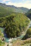Río de la montaña rocosa del barranco Fotos de archivo