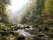 Río de la montaña rocosa en un bosque Fotos de archivo