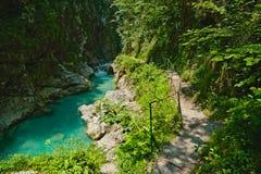 Río de la montaña y un rastro. Gargantas de Tolmin foto de archivo libre de regalías