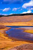 Río de la pradera Foto de archivo libre de regalías