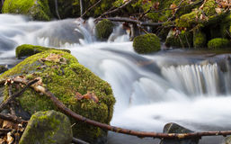 Río de la primavera Fotografía de archivo