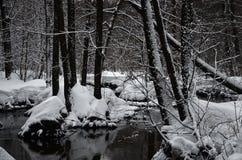 Río de la primavera Imagen de archivo
