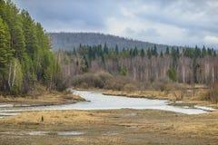 Río de la primavera en un fondo de montañas y de bosques Fotografía de archivo