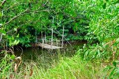 Río de la selva con poco embarcadero de madera en él en el kampot de Camboya imágenes de archivo libres de regalías