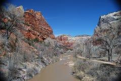 Río de la Virgen, Zion National Park Imagenes de archivo