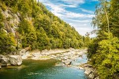 Río de las montañas cárpatas imagen de archivo