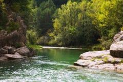 Río de las montañas con la orilla rocosa pyrenees Foto de archivo libre de regalías
