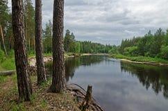 Río de Lukh (Rusia) Imagen de archivo libre de regalías