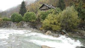 Río de Lys en un bosque en el valle de Gressoney cerca de Monte Rosa durante otoño metrajes