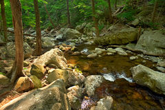 Río de madera en el parque nacional de Shenandoah imagen de archivo libre de regalías