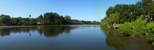 Río de marea inferior en Clearwater   Fotos de archivo libres de regalías