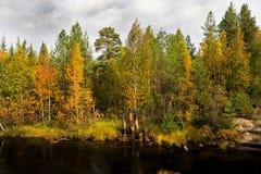 Río de Mininka en un día ventoso del otoño Fotografía de archivo libre de regalías