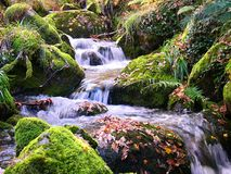 Río de Montain Imagenes de archivo
