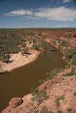 Río de Murchison - Australia Foto de archivo