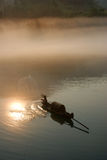 Río de niebla en salida del sol Foto de archivo libre de regalías