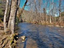 Río de Oconaluftee en el invierno fotografía de archivo libre de regalías